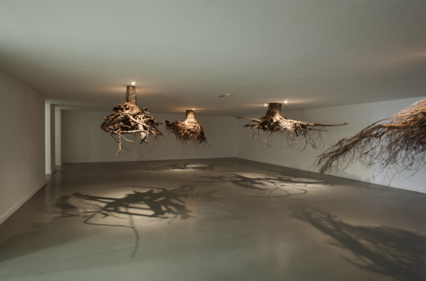"""Baumwurzeln an der Decke """"Tree roots"""""""