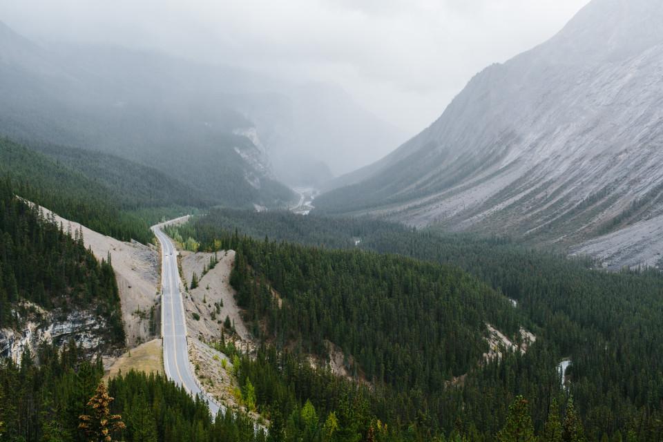 Alberta-205_o
