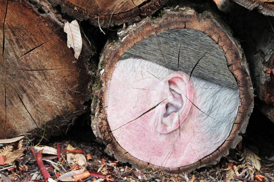 3. Ear Kopie