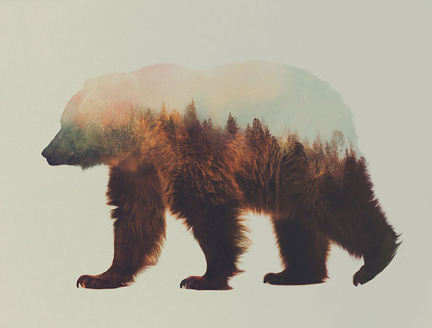 double-exposure-animal-photography-andreas-lie-9__880